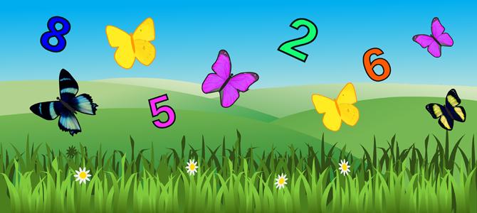 butterflyFeatureImage670x300